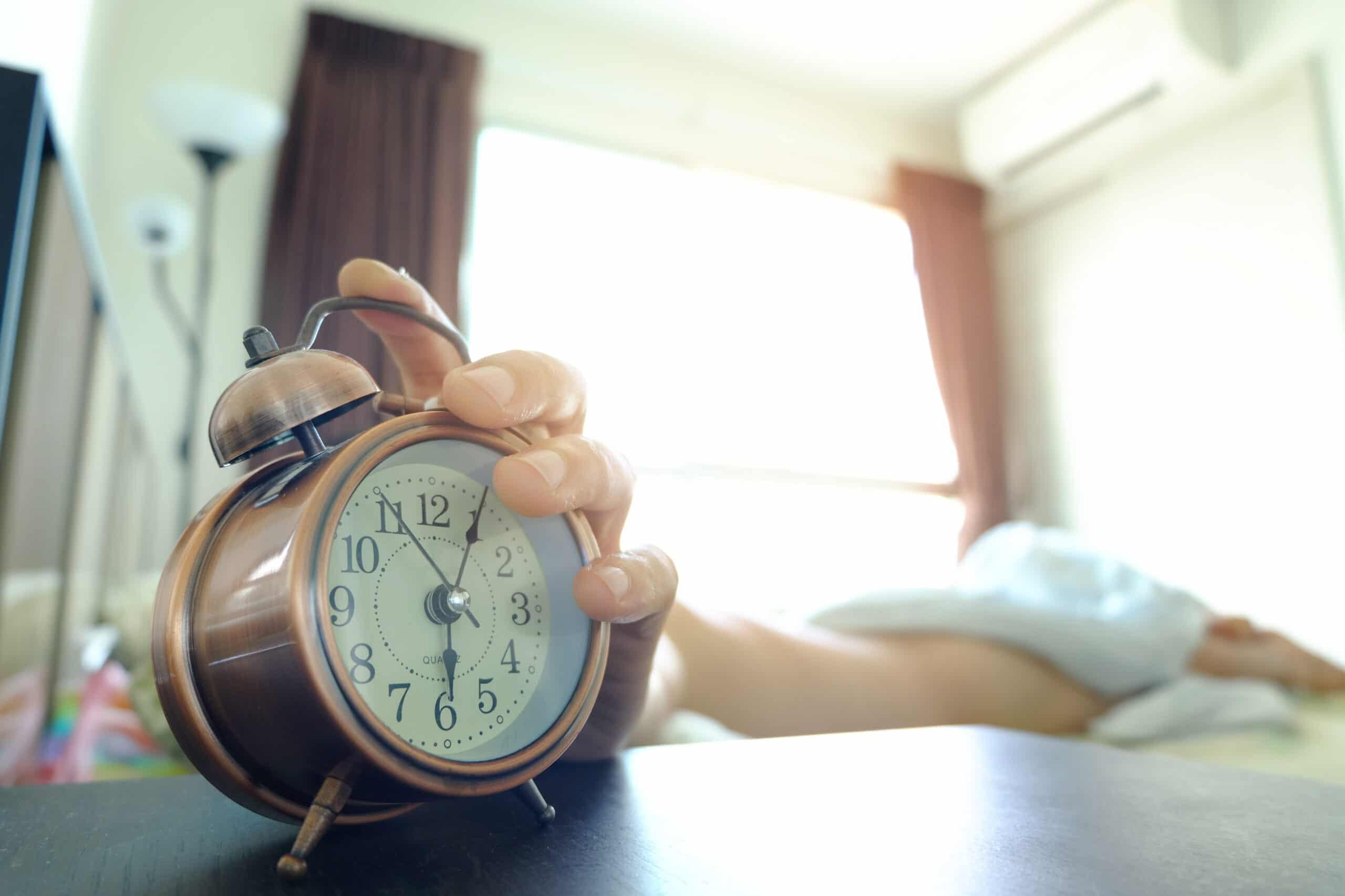 Kā ziemas miegs atšķiras no vasaras miega