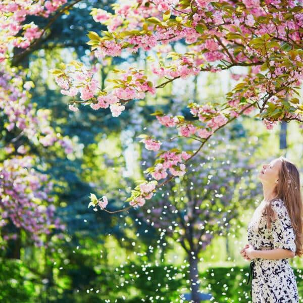 Putekšņi ir izplatītākais pavasara alerģiju izraistītājs